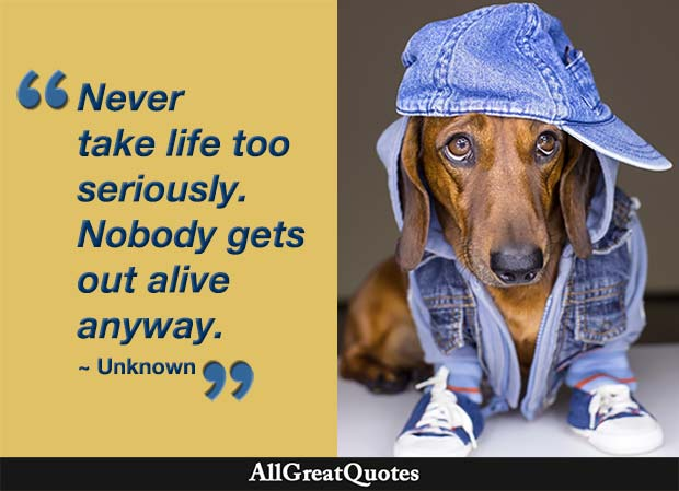 never take life too seriously quote