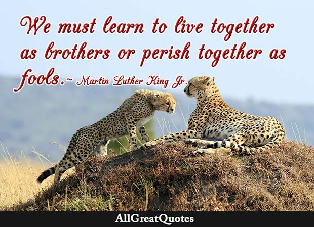 live together as brothers martin luther king