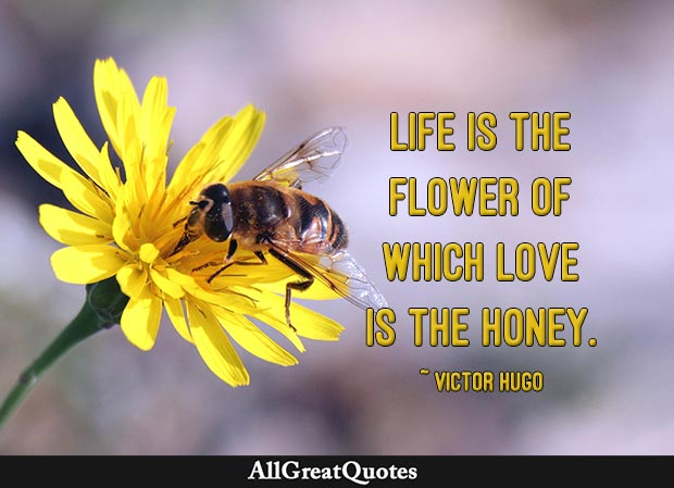 Life Is The Flower Of Which Love Is The Honey Victor Hugo Interesting Flower Love Quotes