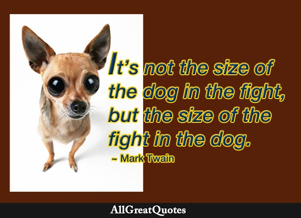 the fight in the dog mark twain