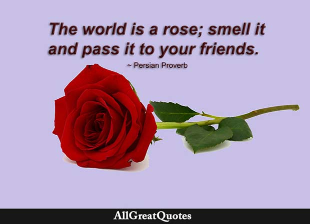 world is a rose quote - persian proberb