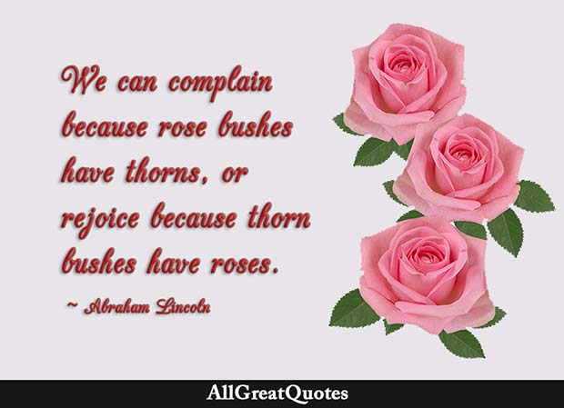 thorn bushes have roses quote - abraham lincoln