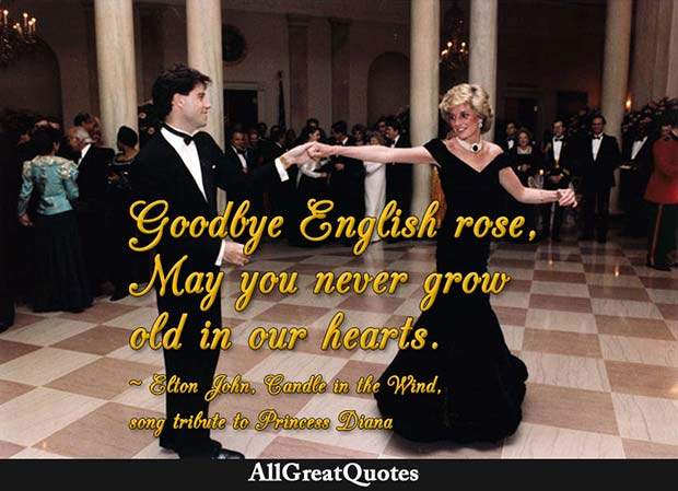 goodbye english rose quote elton john