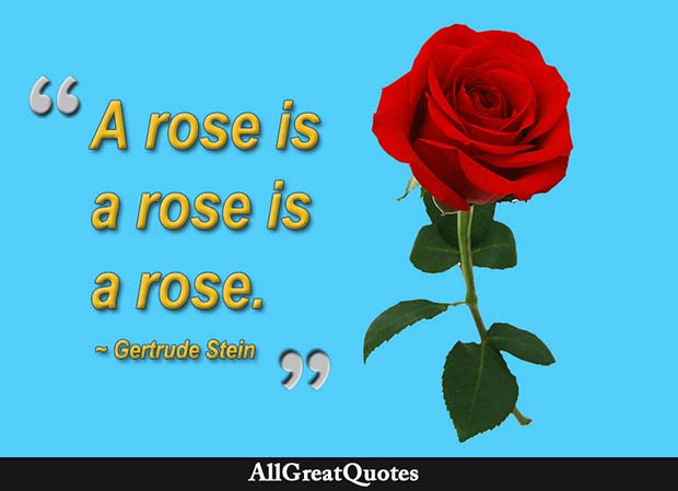 a rose is a rose gertrude stein