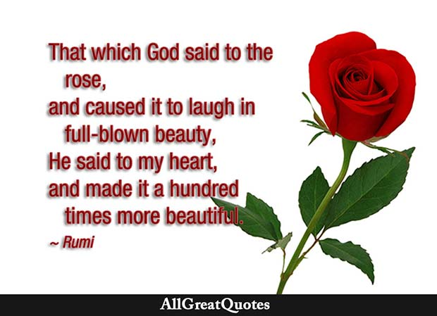 that which god said to the rose - rumi