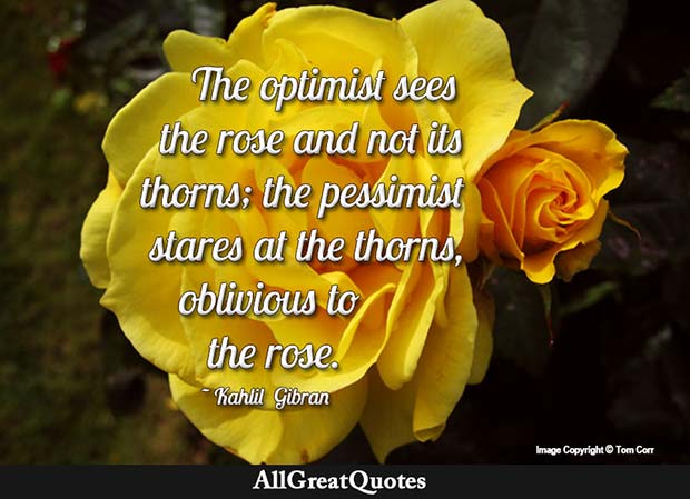 optimist sees the rose quote kahlil gibran
