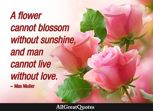 man cannot live without love max muller