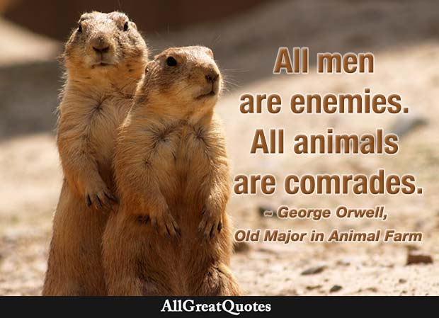 All men are enemies. All animals are comrades - George Orwell Animal Farm quote