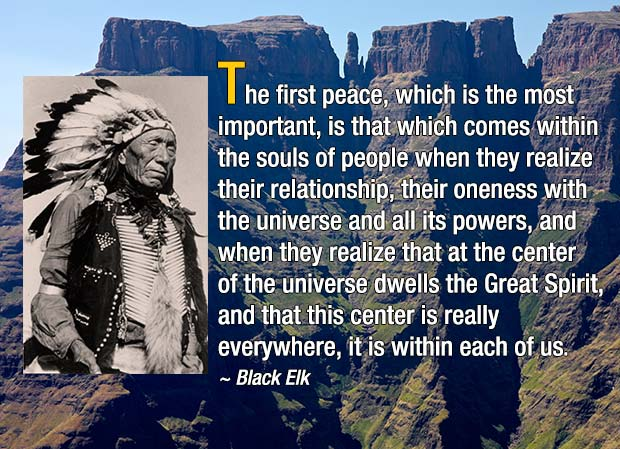 The first peace, which is the most important, is that which comes within the souls of people. - Black Elk