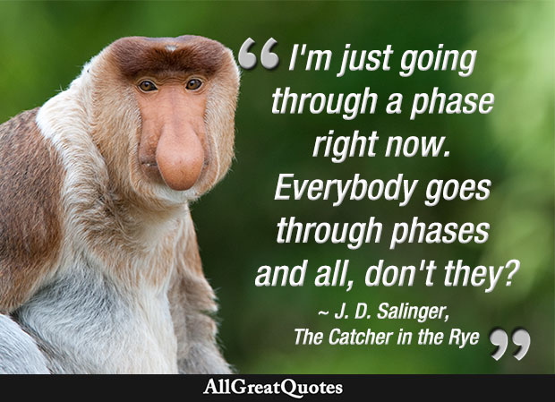 I'm just going through a phase right now. Everybody goes through phases and all, don't they? - quote by J. D. Salinger