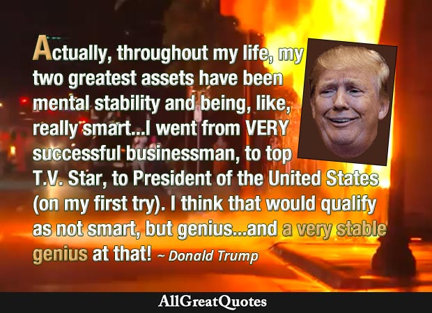 Mental stability and stable genius quote by Donald Trump