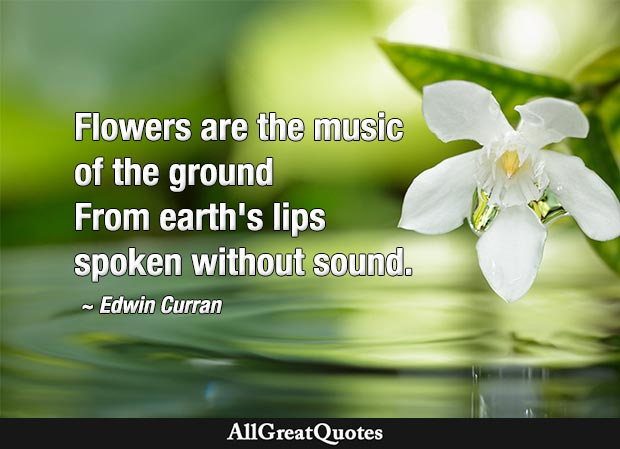 flowers quote - Flowers are the music of the ground From earth's lips spoken without sound
