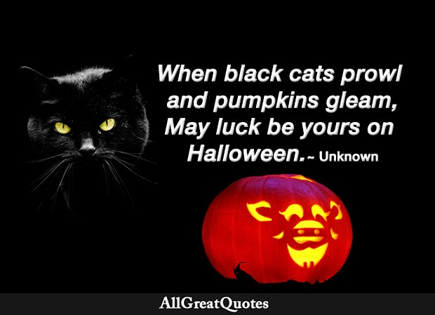 When black cats prowl and pumpkins gleam, May luck be yours on Halloween - Unknown