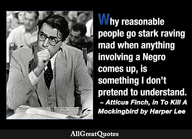 Why reasonable people go stark raving mad when anything involving a Negro comes up, is something I don't pretend to understand - Harper Lee quote