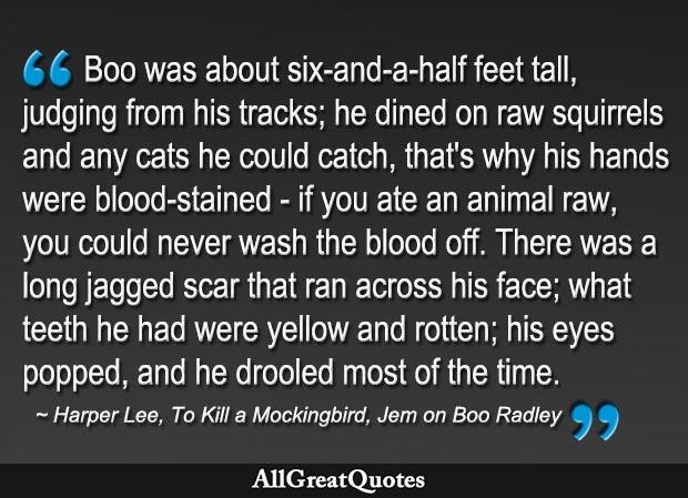 Jem's description of Boo Radley