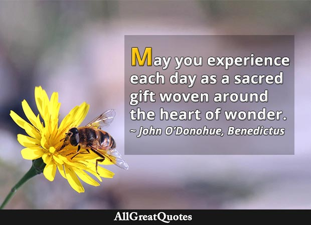 May you experience each day as a sacred gift woven around the heart of wonder - John O'Donohue quote