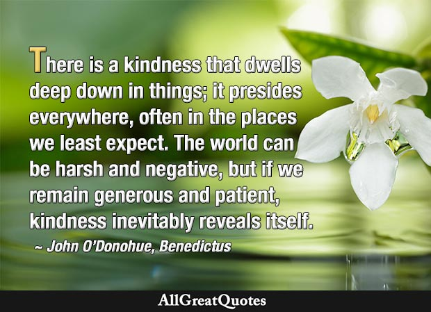 There is a kindness that dwells deep down in things  - John O'Donohue quote
