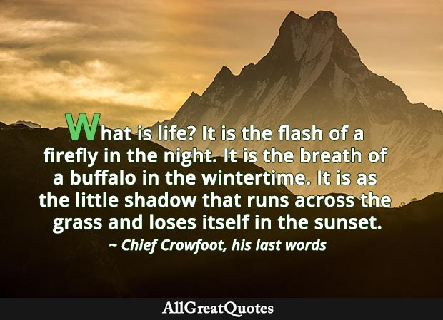 What is life? It is the flash of a firefly in the night. It is the breath of a buffalo in the wintertime. It is as the little shadow that runs across the grass and loses itself in the sunset. - Chief Crowfoot