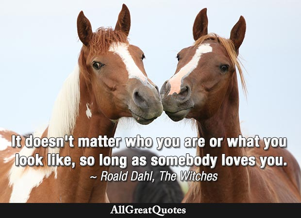 It doesn't matter who you are or what you look like, so long as somebody loves you - Roald Dahl quote