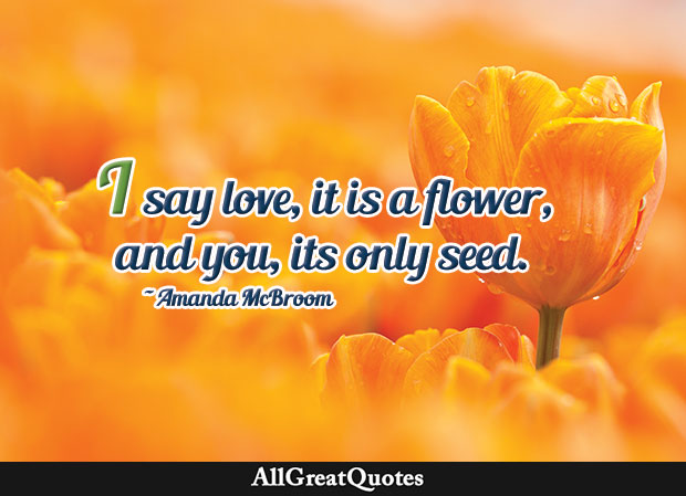 I say love, it is a flower, And you, its only seed. - Amanda McBloom