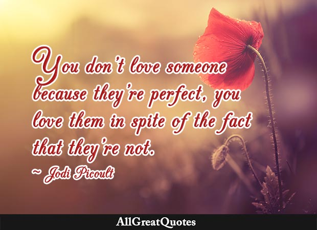 You don't love someone because they're perfect, you love them in spite of the fact that they're not - Jodi Picoult