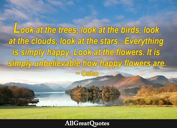 Look at the trees, look at the birds, look at the clouds, look at the stars...Everything is simply happy. Look at the flowers. It is simply unbelievable how happy flowers are. ~ Osho