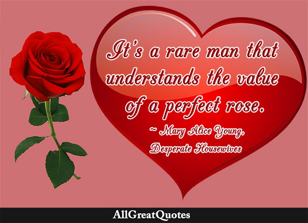 It's a rare man that understands the value of a perfect rose - Mary Alice Young, Desperate Housewives