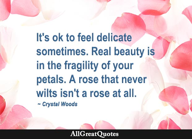 It's ok to feel delicate sometimes. Real beauty is in the fragility of your petals. A rose that never wilts isn't a rose at all - Crystal Woods