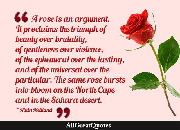 A rose is an argument. It proclaims the triumph of beauty over brutality, of gentleness over violence, of the ephemeral over the lasting, and of the universal over the particular. The same rose bursts into bloom on the North Cape and in the Sahara desert - Alain Meilland
