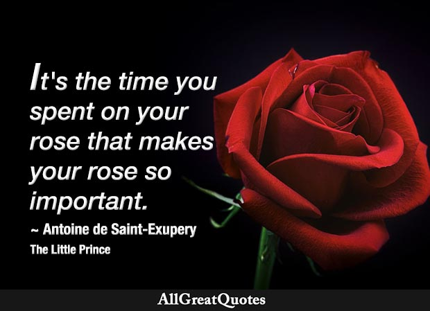 It's the time that you spent on your rose that makes your rose so important...People have forgotten this truth, but you mustn't forget it. You become responsible forever for what you've tamed. You're responsible for your rose. - Antoine de Saint-Exupery