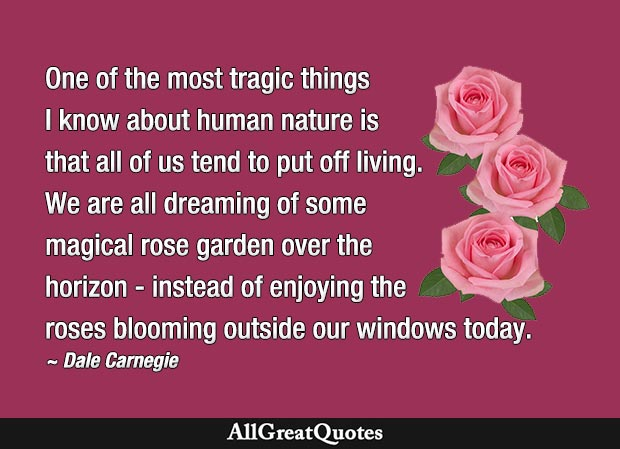 dale carnegie quote dreaming of some magical rose garden over the horizon - instead of enjoying the roses blooming outside our windows today