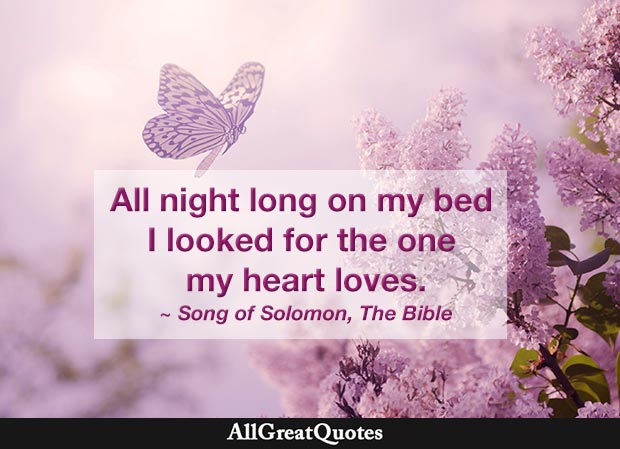 All night long on my bed I looked for the one my heart loves - song of solomon quote