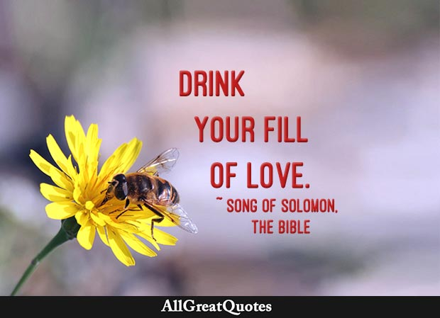 Drink your fill of love - Song of Solomon quote