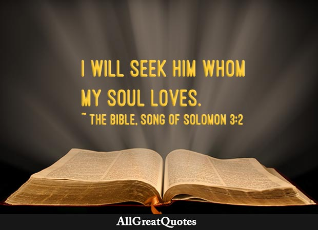 I will seek him whom my soul loves - song of solomon quote