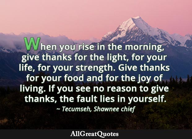 When you rise in the morning, give thanks for the light, for your life, for your strength. Give thanks for your food and for the joy of living. If you see no reason to give thanks, the fault lies in yourself. - Tecumseh