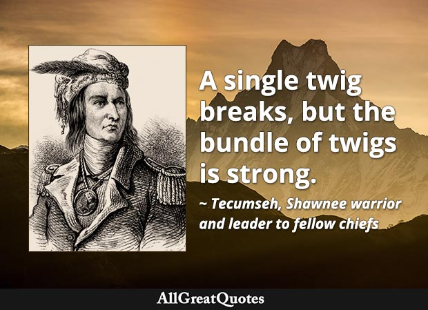 A single twig breaks, but the bundle of twigs is strong. - Tecumseh